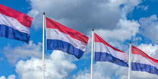Row of four Dutch national flags Royalty Free Stock Image