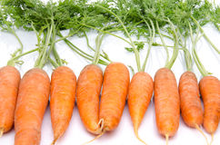 Row of fresh carrots with leaves Royalty Free Stock Photography