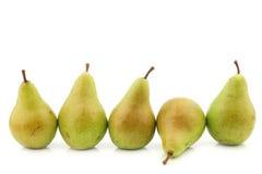 Row of fresh migo pears Royalty Free Stock Images