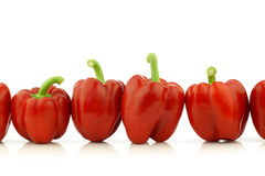 Row of fresh red bell peppers (capsicum) Royalty Free Stock Image