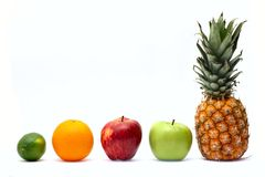 Row of fresh ripe fruits Stock Photography