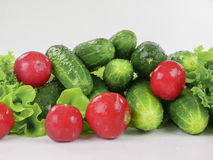 Row of fresh spring vegetables Royalty Free Stock Images