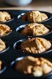 Row of freshly baked vegan vanilla cherry muffins royalty free stock photos