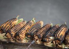 Cooked ears of corn mexico city Stock Photos