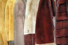 Row of fur coats of different colors Royalty Free Stock Photos