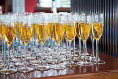 Row glasses of champagne for party, event in restaurant Stock Photos