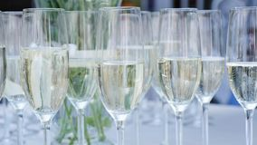 A row of glasses filled with champagne are lined up ready to be served stock footage
