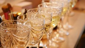 A row of glasses filled with champagne are lined up ready to be served stock video footage