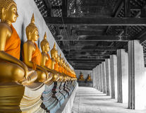 Row of gold Buddha in temple at Ayutthaya-Thailand Stock Photo