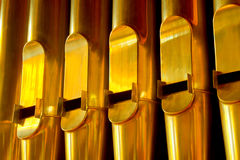 Row of gold organ pipes Stock Images