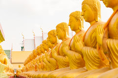 Row of golden bhudda statue meditation in Thailand Stock Photography