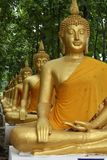 Row of Golden Buddha royalty free stock photography