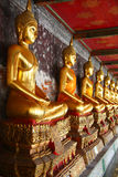 A Row Of Golden Buddha Statue Stock Photography