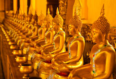 Row of golden buddha statue Royalty Free Stock Image