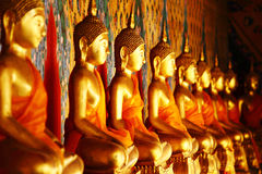Row of golden buddha statue Stock Photos