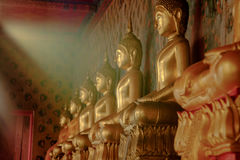 Row of golden buddha statue with natural sunlight effect at Wat Royalty Free Stock Photo