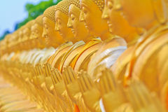 A row of Golden Buddha statue Royalty Free Stock Photography