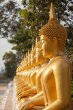 A row of golden Buddha statue. Golden Buddha in a row, Thailand Royalty Free Stock Image