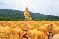 Row of golden buddha statue Royalty Free Stock Images