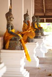 Row of golden buddha statue Stock Image