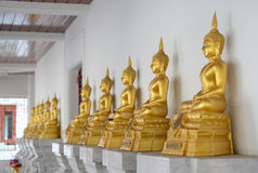 Row of golden buddha statue Royalty Free Stock Photography