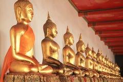 Row of golden buddha statue Stock Photography