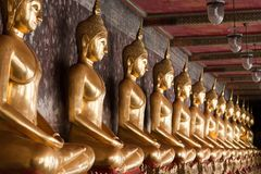 Row of Golden Buddha Statues Royalty Free Stock Image