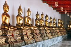 Row of Golden Buddha in Thailand Royalty Free Stock Images