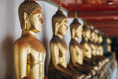 Row of Golden Buddha in Thailand Royalty Free Stock Photography