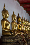 Row of  Golden  Buddhas Stock Image