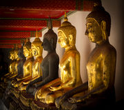 Row of golden and dark seated buddhas in a Buddhist temple Royalty Free Stock Photo