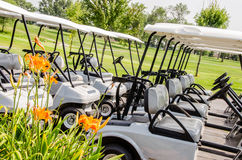 Row of Golf carts. A row of white and grey golf carts lined up, parked in front of the golf course Stock Photography
