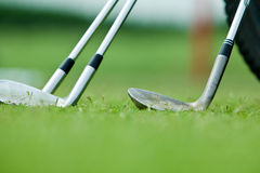 Row of golf shaft. And grass background Royalty Free Stock Photo