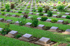 Row of grave stone in War Cemetery Royalty Free Stock Photography