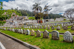 Row of gravestones on grass in cemetary San Diego Royalty Free Stock Image
