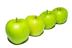 Row of green apples. Royalty Free Stock Photo