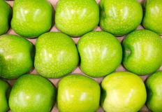 Row of green apples. Stock Image