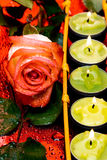 Row of green candles Royalty Free Stock Photo