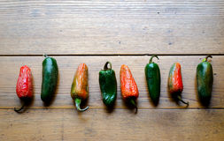 Row of green and red hot peppers Stock Images