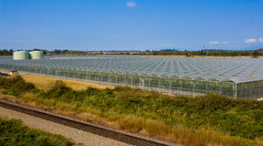 Row of greenhouses with train tracks Royalty Free Stock Image
