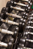 Row of Hand Barbells weight training equipment Stock Photo