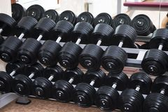 Row of Hand Barbells weight training equipment Royalty Free Stock Photography