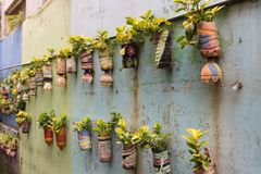 Row of hanging, potted plants, in Malang, Indonesia. stock photography