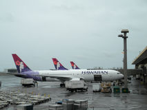 Row of Hawaiian Airlines planes parked at airport Stock Image