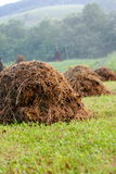 Row of Haystacks Stock Images