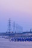 Row of high voltage poles  and many tanks floating above the sea Stock Photo
