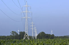 Row of high voltage pylons in a corn field Royalty Free Stock Photos