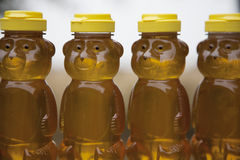 Row of Honey Bears Stock Photography