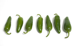 Row of Hot Japapeno Peppers Royalty Free Stock Photography