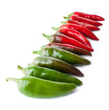 The Row of Hot Peppers Stock Image